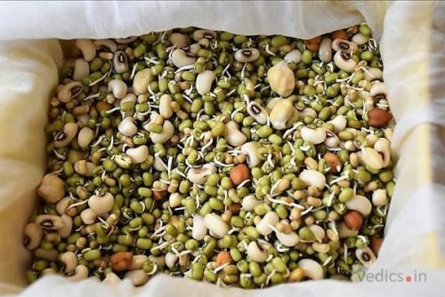 Boiled Sprouts Salad
